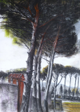 pompei_trees